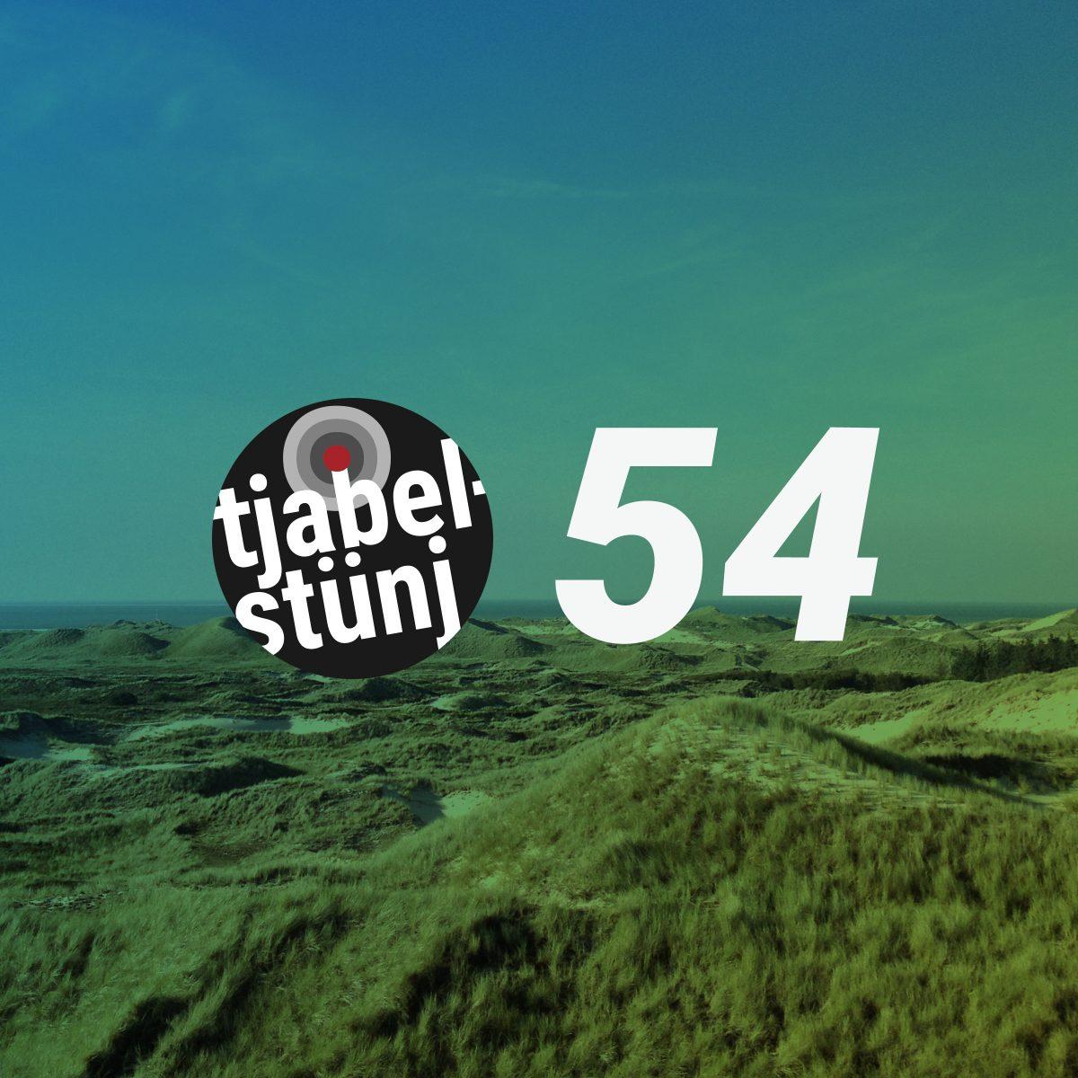 Playlist #54