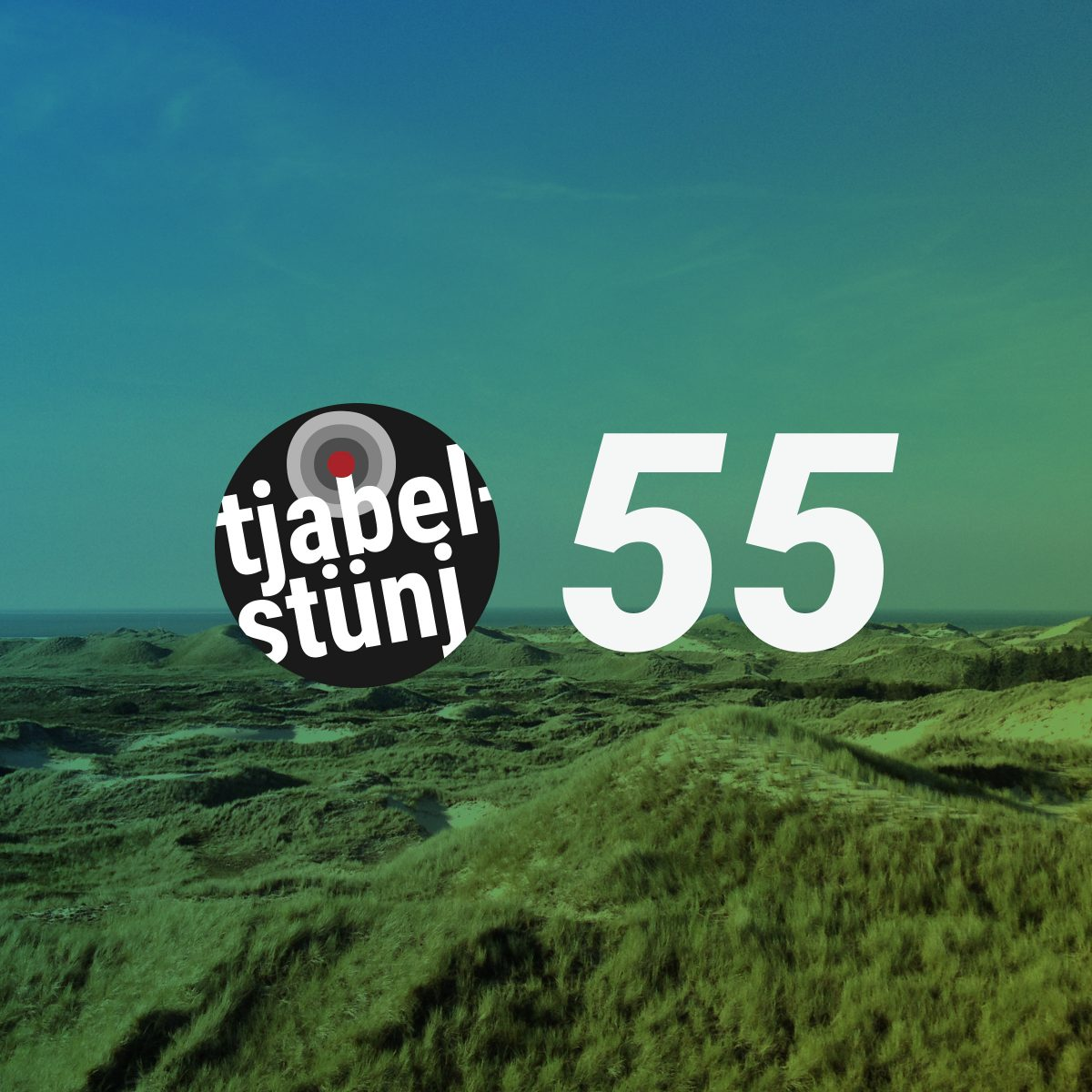 Playlist #55