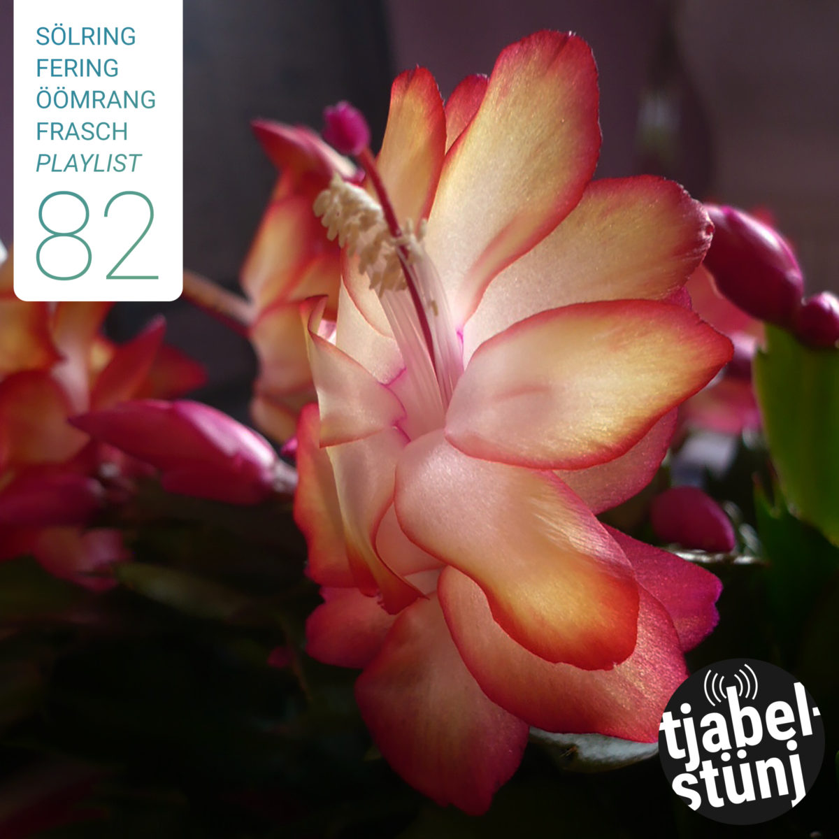 Playlist #82